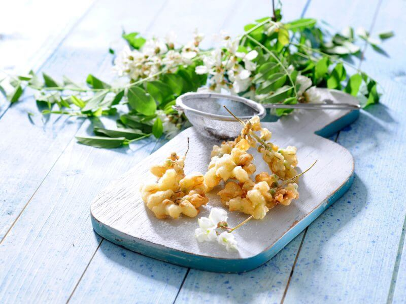 Acacia flower fritters